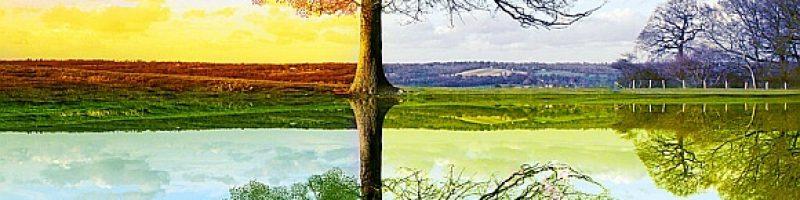 Four Seasons