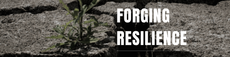 Forging Resilience